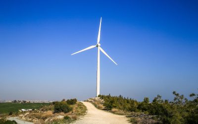 Zeven aanbevelingen voor afstemming klimaatbeleid op handel